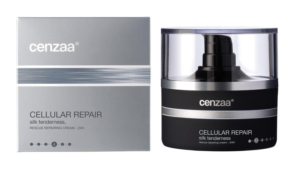 Cenzaa-Repair